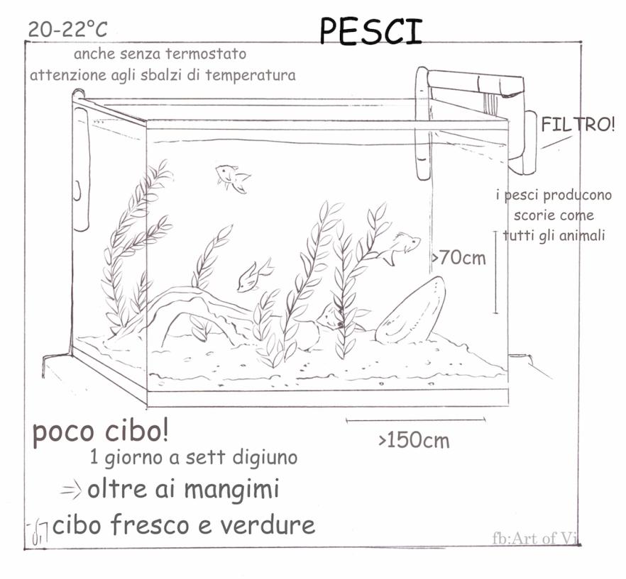Acquario art of Vi.jpg